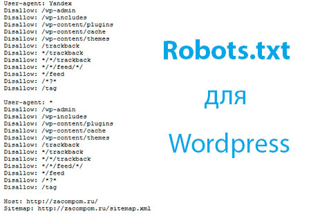 robots-для-wordpress