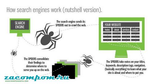 Веб-пауки и сканирование