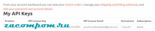 лицензионный ключ API