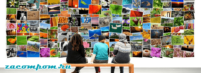 Как создать привлекательную галерею изображений для вашего сайта на WordPress