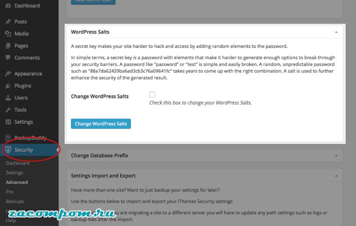 Изменить соли WordPress
