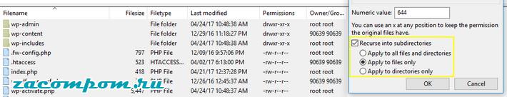 Применить только к файлам